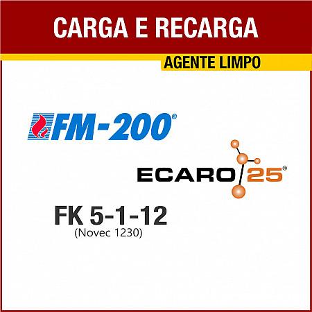 CARGA E RECARGA AGENTE LIMPO